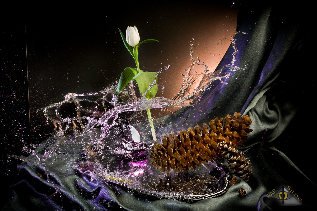 Creative Photography_Broken Vase_Arpi Pap