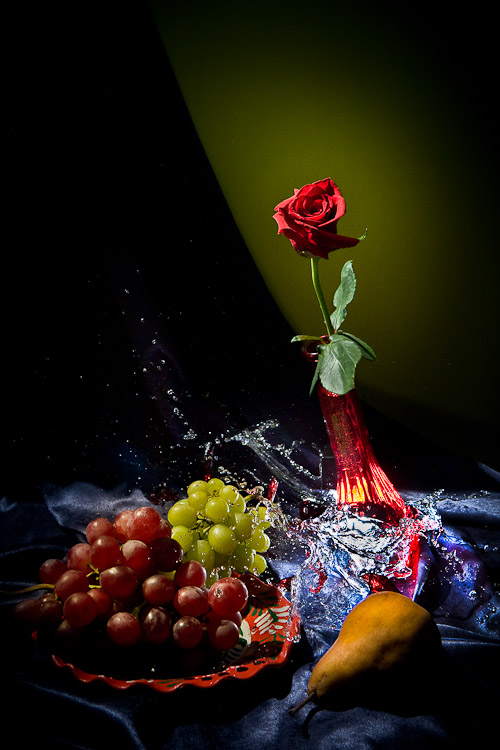 Creative Photography_Broken Glass Rose_Arpi Pap