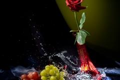 Creative Photography_Broken Glass Rose_Arpi Pap